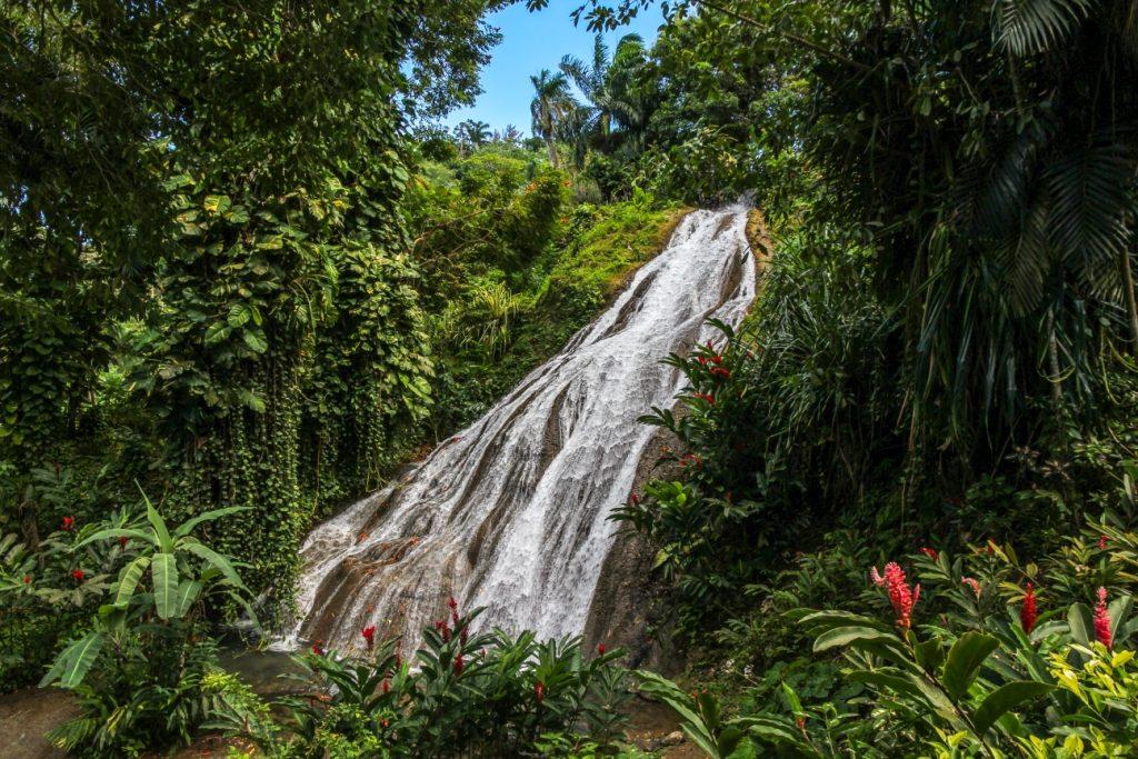 Cachoeira do Shaw Park por Stéphane DAMOUR